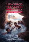 La Isla de Las Sorpresas (Surprice Island) (Boxcar Children Mysteries #2) Cover Image