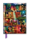 Aimee Stewart: Treasure Hunt Bookshelves (Foiled Journal) (Flame Tree Notebooks) Cover Image
