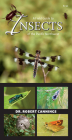A Field Guide to Insects of the Pacific Northwest Cover Image