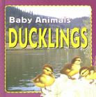 Ducklings Cover Image