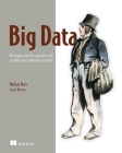 Big Data: Principles and best practices of scalable realtime data systems Cover Image