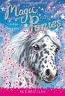 Circus Surprise #7 (Magic Ponies #7) Cover Image