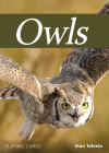 Owls Playing Cards (Nature's Wild Cards) Cover Image