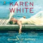 Dreams of Falling Cover Image
