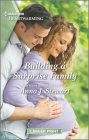 Building a Surprise Family: A Clean Romance (Butterfly Harbor Stories #10) Cover Image