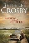 Passing through Perfect: Family Saga (A Wyattsville Novel Book 3) Cover Image