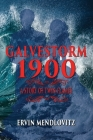 GalveStorm 1900: A Story of Twin Flames Cover Image