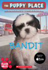 The Puppy Place: Bandit Cover Image