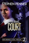 Tribal Court: David Brunelle Legal Thriller #2 Cover Image