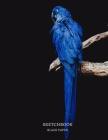 Sketchbook Black Paper: Black Paper Premium Blue Parrot/Bird Cover Sketchbook, for doodling, sketching, typography, drawing, 8.5x11 Extra Larg Cover Image
