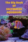 The Big Book Of Saltwater Aquarium: How To Care For And Keep Marine Fish And Corals: New Marine Aquarium Books Cover Image