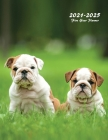 2021-2025 Five Year Planner: Large 60-Month Monthly Planner (Puppies) Cover Image