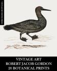 Vintage Art: Robert Jacob Gordon: 20 Botanical Prints Cover Image