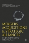 Mergers, Acquisitions and Strategic Alliances: Understanding the Process Cover Image