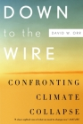 Down to the Wire: Confronting Climate Collapse Cover Image