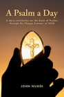 A Psalm a Day: A daily meditation on the Book of Psalms through the Plague Summer of 2020 Cover Image