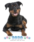 2020 Rottweiler Planner - Weekly - Daily - Monthly Cover Image