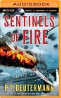 Sentinels of Fire Cover Image