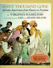 Many Thousand Gone: African Americans from Slavery to Freedom Cover Image