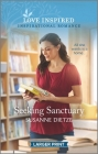 Seeking Sanctuary Cover Image