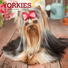 Yorkshire Terriers 2021 Square Foil Cover Image