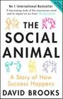 Social Animal: A Story of How Success Happens Cover Image