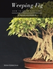 Weeping Fig: How to grow and care Cover Image