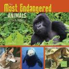 The Most Endangered Animals in the World (All about Animals) Cover Image