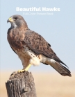 Beautiful Hawks Full-Color Picture Book: Birds Photography Book- Birds of Prey Nature Animals Cover Image