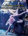 A Visual Guide to Invertebrates (Visual Exploration of Science) Cover Image
