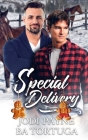 Special Delivery: A Wrecked Holiday Novel Cover Image