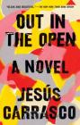 Out in the Open: A Novel Cover Image