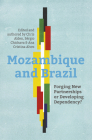 Mozambique and Brazil: Forging new partnerships or developing dependency? Cover Image
