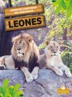 Leones Cover Image