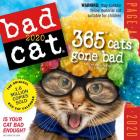 Bad Cat Page-A-Day Calendar 2020 Cover Image