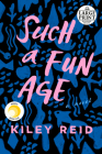 Such a Fun Age Cover Image