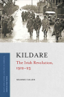 Kildare: The Irish Revolution, 1912-23 Cover Image