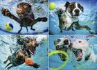 Underwater Dogs 2 1000-Piece Puzzle Cover Image