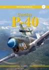 Curtiss P-40 Vol. I (Camouflage & Decals) Cover Image