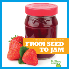 From Seed to Jam (Where Does It Come From?) Cover Image