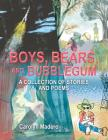 Boys, Bears, and Bubblegum: A Collection of Stories and Poems Cover Image