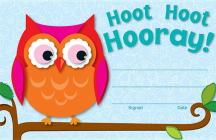 Hoot Hoot Hooray! Awards & Certificates Cover Image