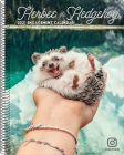 Herbee the Hedgehog 2021 Engagement Calendar Cover Image