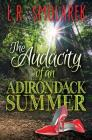 Audacity of an Adirondack Summer Cover Image