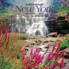 New York Wild & Scenic 2021 Mini 7x7 Cover Image