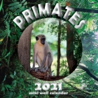 Primates 2021 Mini Wall Calendar Cover Image