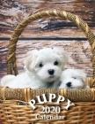 Puppy 2020 Calendar Cover Image