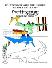 What color were Prehistoric Sharks and Rays? Cover Image