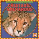 Cheetahs/Guepardos (Animals I See at the Zoo) Cover Image