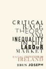 Critical Race Theory and Inequality in the Labour Market: Racial Stratification in Ireland Cover Image